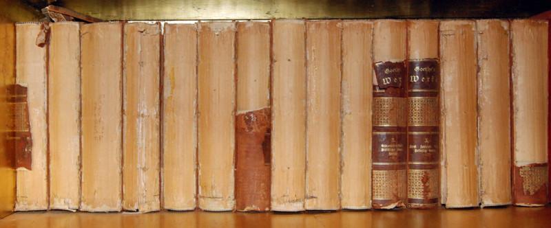ICI-SITElibrary-shelf-w